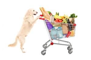 cani-nei-supermercati