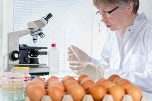 shelf-life-analisi-di-laboratorio