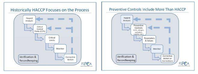 schema haccp controlli preventivi per fsma