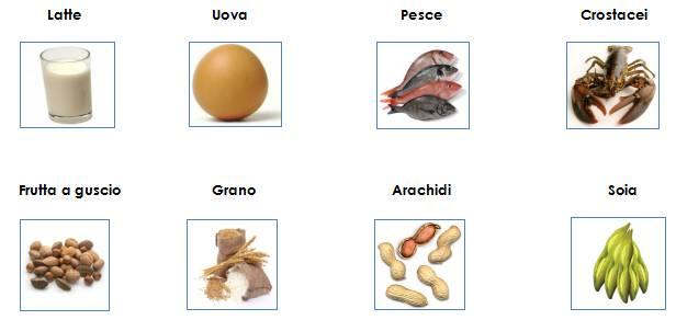 8 major food allergen