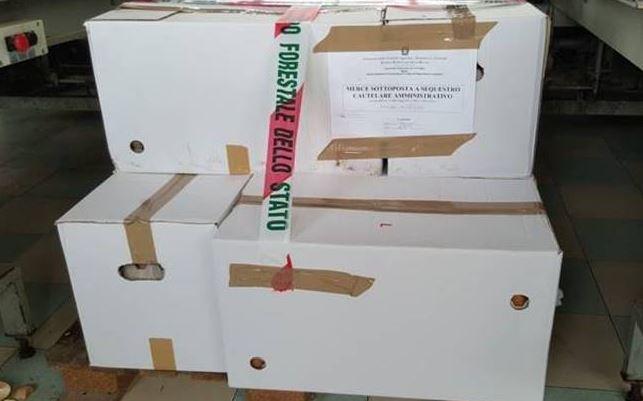 etichetta contraffatta