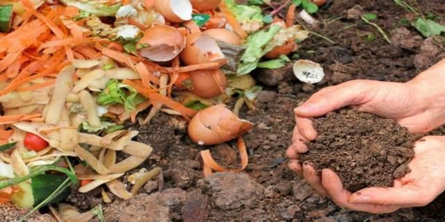 sottoprodotti o rifiuti? Gestione scarti alimentari