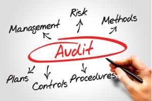 audit organismo-vigilanza