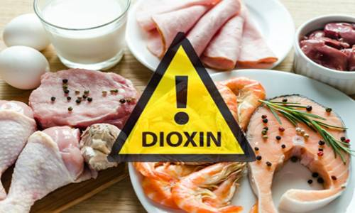 diossine pericolo