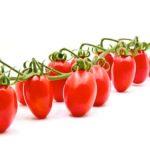 Anche il pomodoro ha la sua origine