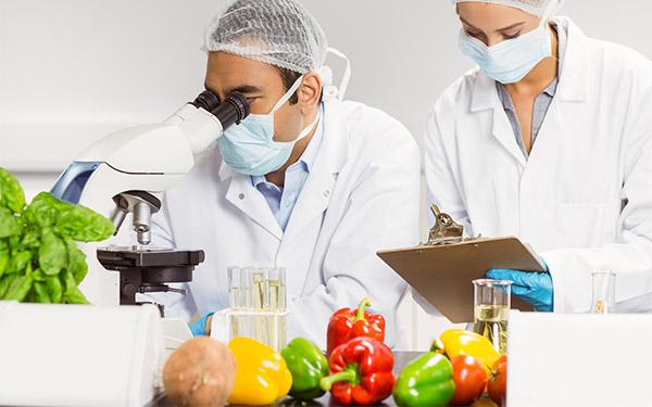 Relazione controlli alimenti 2017