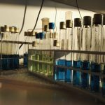 laboratorio accreditato gruppo maurizi
