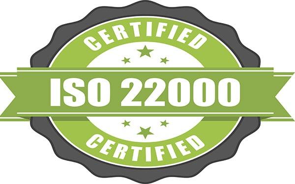 nuova versione iso 22000 sito